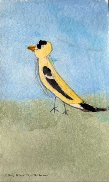 "Kelly's ""Goldfinch"" (7/09)"