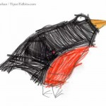 Nature Notes: Robins